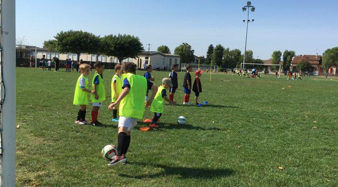 INFOS : Détections Ecole de foot Lavaur Fc